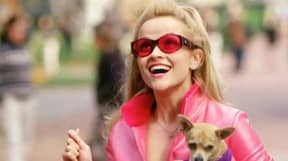 Legally Blonde Cast Are Reuniting For The First Time In 20 Years Tonight