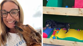 You Can Now Take Your Pooch To Stay At This Sausage Dog Hotel