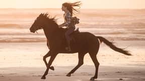 Disney+ Release Trailer For New Black Beauty Movie Starring Kate Winslet