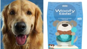 Pets At Home Is Selling Easter Eggs For Dogs
