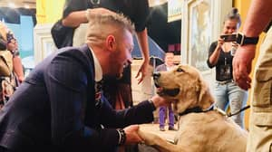 Tom Hardy Became Besties With The Security Dog At The Venom Premiere