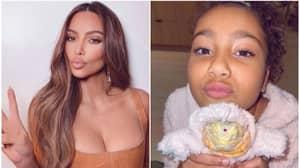 Kim Kardashian Angers Fans After Dressing Pet Lizard In Custom-Made Skims