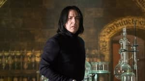 People Have Just Realised Professor Snape Is The Only Harry Potter Character To Never Change His Clothes