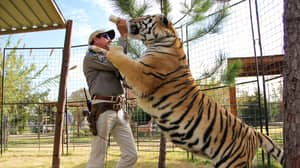 For The 'Tiger King' Superfan, This Podcast Is Going To Complete You