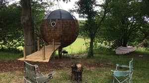 You Can Now Stay In A Dreamy Floating Treehouse In Dorset