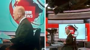 BBC Newsreader Caught Wearing Tiny Shorts Under Desk