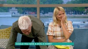 'This Morning' Viewers In Hysterics As Dog Goes To The Toilet Live On Air