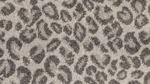 People Are Completely Obsessed With This Woman's Leopard Print Carpet