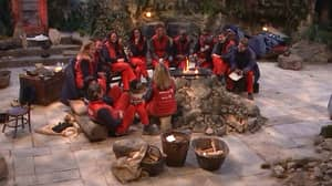 I'm A Celebrity Fans Say They Feel Jealous Of Contestants' 'Freedom'