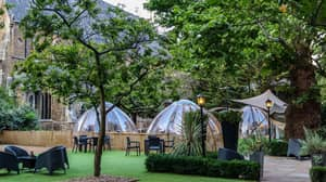 You Can Now Eat Inside An Incredible Private Dome In A Secret Garden