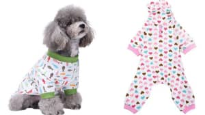 You Can Now Buy Jumpsuit Pyjamas For Your Dog