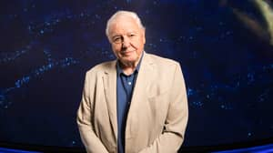 BBC Bags David Attenborough And Danny Dyer For New Coronavirus Homeschooling Videos