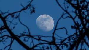 Rare 'Blue' Moon Will Light Up The Sky On Halloween