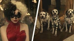 PETA Fears Disney's Cruella Will Lead To Influx Of Puppy Sales