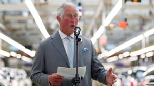 Lilibet Diana: Prince Charles Speaks Out On Birth Of Harry And Meghan's Daughter