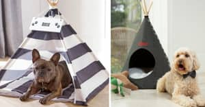 You Can Now Buy Teepees For Your Pets And They're Incredible