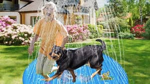 Amazon Is Selling A Doggy Sprinkler Paddling Pool