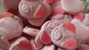 Percy Pigs Could Be Under Threat Due To Brexit