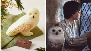 Marks And Spener Launches Chocolate Hedwig For Easter
