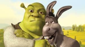 Shrek & Shrek 2 Are Officially Back On Netflix Today