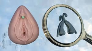 Artist Creates 3D Clitoris Models To Help Educate 31% Of Men Who Can't Find It