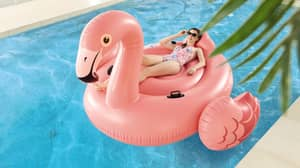 Aldi Is Selling A Giant Flamingo Pool Float For £20