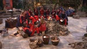 I'm A Celebrity 2021 'Could Remain In The UK' After Success Of Gwrych Castle