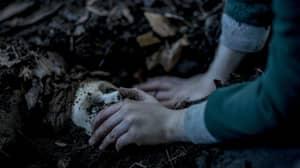 Demonic Doll Horror 'Brahms: The Boy 2' Looks Terrifying