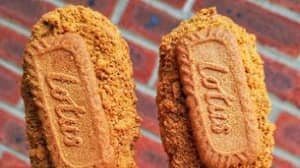 Woman Shares Recipe For Most Mouth-Watering Vegan Lotus Biscoff Ice Creams