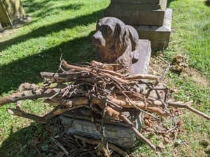 People Are Leaving Sticks At This 100-Year-Old Dog Grave