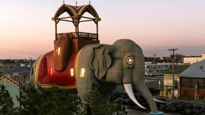 This Giant Elephant Airbnb Is The Stuff Dreams Are Made Of