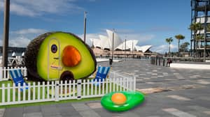 Introducing The World's First Avocado-Shaped Camper