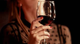 World Health Organisation Says Women Of Childbearing Age Should Be Prevented From Drinking Alcohol