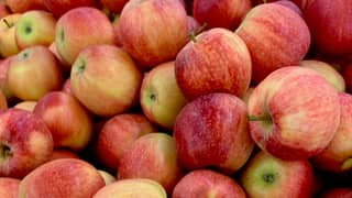 Nurse Fined £150 For Fly-tipping After Giving Away Free Apples