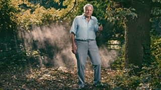 The Trailer Has Just Dropped For David Attenborough's New BBC Show, 'Extinction: The Facts'
