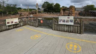 Chester Zoo Announces Plans To Reopen Next Week