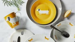Dunelm Is Selling A New Sausage Dog Range Including Bedding, Accessories And Kitchenware