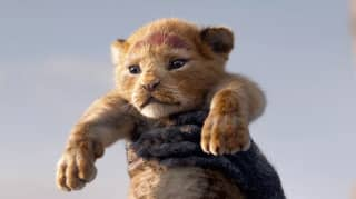 Disney Is Officially Making A Live-Action 'Lion King' Sequel
