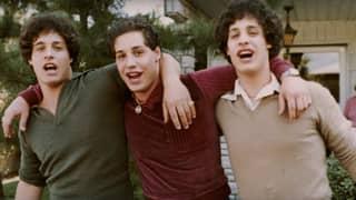 'Three Identical Strangers' Just Got Added To Netflix