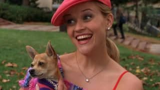 EXCLUSIVE: 'Legally Blonde 3' Release Date Finally Confirmed As Reese Witherspoon Returns