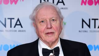 David Attenborough Will Present 'Urgent' Documentary On Climate Change