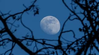 ​Rare 'Blue' Moon Will Light Up The Sky On Halloween