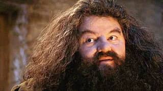 Hagrid Could Make An Appearance In 'Fantastic Beasts 3'