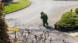 Man Tries To Sneak Out During Lockdown By Dressing As A Bush