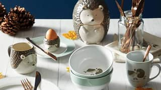 Dunelm Has Released A Hedgehog Collection And It's The Cutest Thing You Will See Today