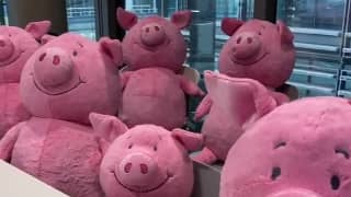 People Are Officially Triggered By M&S' 'Terrifying' New Percy Pig Advert
