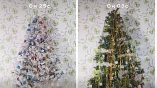 Firefighters Share Video Warning About Dangers Of 'Cheap' Artificial Christmas Trees