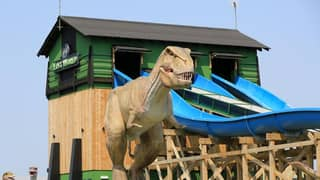 Huge New £37million Theme Park Is Opening This Weekend And It Looks Incred