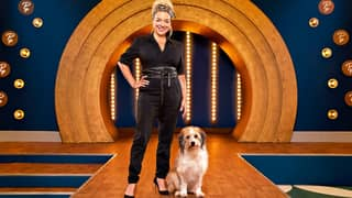 BBC Defends Dog Grooming Reality Show Pooch Perfect Following Backlash