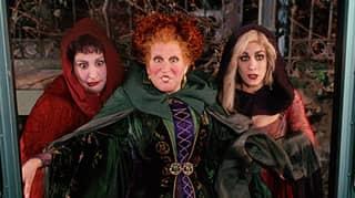 TikToker Discovers Connection Between 'Hocus Pocus' And 'Halloweentown'